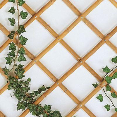 Traliccio estensibile in bambù per pareti, balconi o terrazze