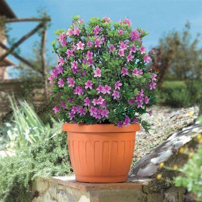 """Bama vaso da giardino tondo """"TERRA"""" in plastica 25 cm terracotta"""