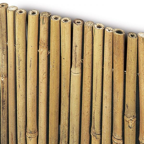 Arella bamboo 150x300 cm cannette di bamboo arella river copertura e recinzione